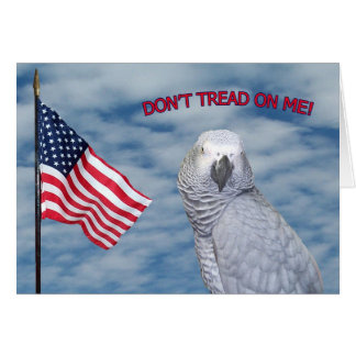 African Grey Don t Tread On Me Small Note Card