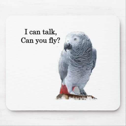 African Grey I can talk, can you fly? Mouse Pad