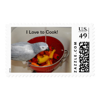 "African Grey ""I Love to Cook"" First Class Stamps"