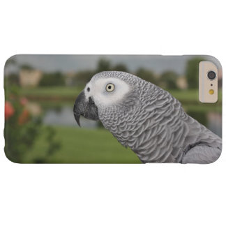 African Grey Lakeside Barely There iPhone 6 Plus Case