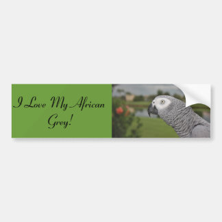 African Grey Lakeside Bumper Sticker