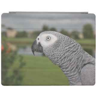 African Grey Lakeside iPad Smart Cover