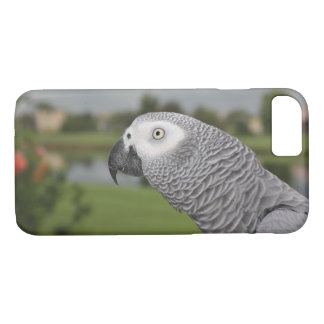 African Grey Lakeside iPhone 8/7 Case