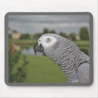 African Grey Lakeside Mouse Pad
