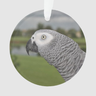 African Grey Lakeside Ornament