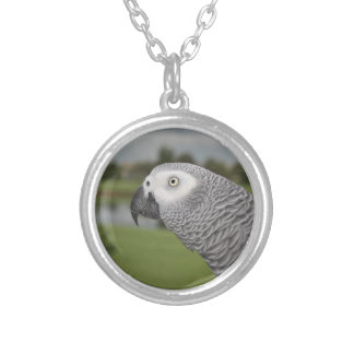 African Grey Lakeside Silver Plated Necklace