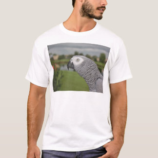 African Grey Lakeside T-Shirt