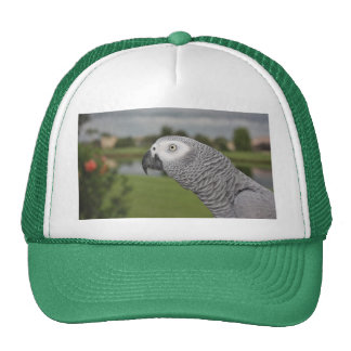 African Grey Lakeside Trucker Hat