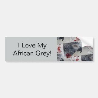 African Grey Love Letters Car Bumper Sticker