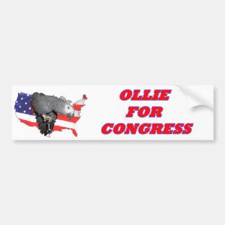 "African Grey ""Ollie for Congress"" Bumper Sticker"