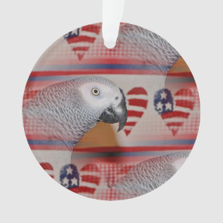 African Grey Parrot 4th of July