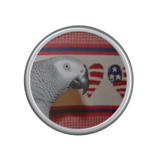 African Grey Parrot 4th of July Speaker