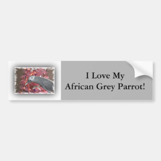 African Grey Parrot and Icy Pink Christmas Tree Bumper Sticker