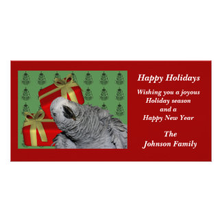 African Grey Parrot Animal Christmas Holiday Card