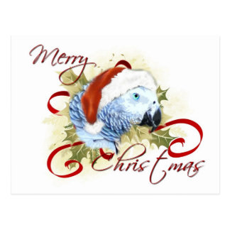 African Grey Parrot Christmas Postcards