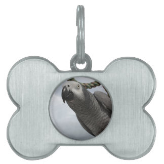 African Grey Parrot Close-up Pet ID Tag