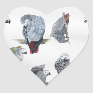 African Grey Parrot. Exclusive designed by Griff Heart Sticker
