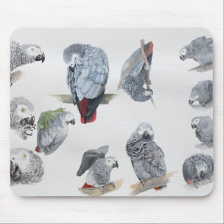 African Grey Parrot. Exclusive designed by Griff Mouse Pad