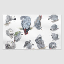 African Grey Parrot. Exclusive designed by Griff Rectangular Sticker