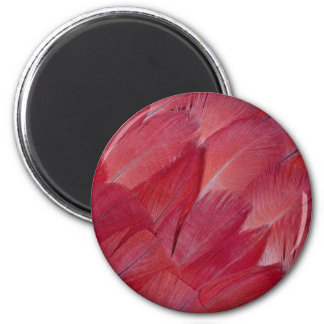 African Grey Parrot Feather Design Magnet