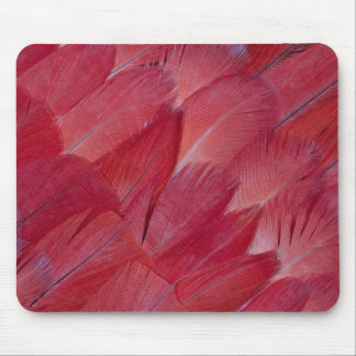 African Grey Parrot Feather Design Mouse Pad