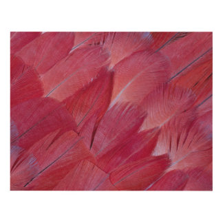 African Grey Parrot Feather Design Panel Wall Art
