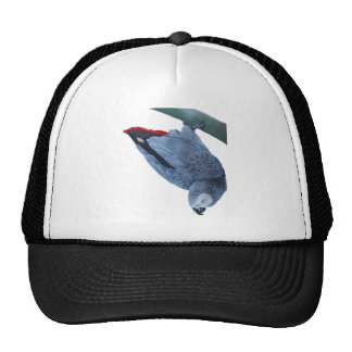 African grey parrot gifts trucker hat