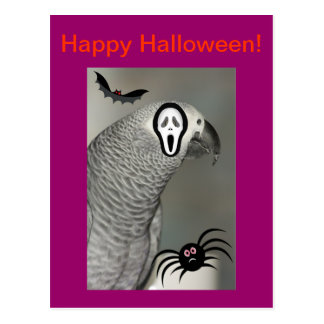 African Grey Parrot Happy Halloween Postcard