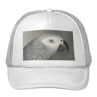 African Grey Parrot Hat
