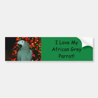 African Grey Parrot Painting with Christmas Tree Bumper Sticker
