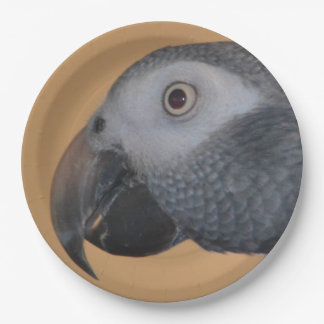 African Grey Parrot Paper Plates
