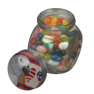 African Grey Parrot Patriotic Jelly Belly Jar Jelly Belly Candy Jars