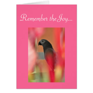 African Grey Parrot Pet Sympathy Card