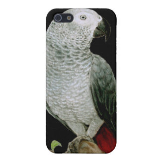 African Grey Parrot Phone Case