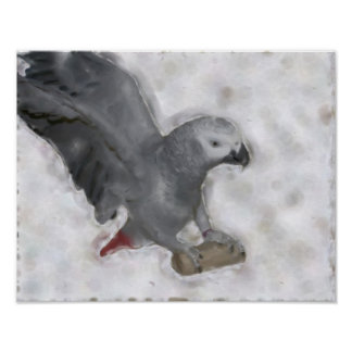 African Grey Parrot Photo Painting Poster