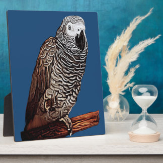 African Grey Parrot Plaques