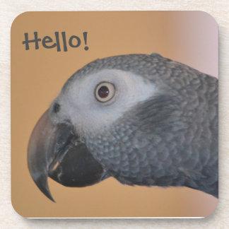 African Grey Parrot Plastic Coaster