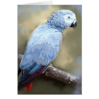 African Grey Parrot Portrait Cards
