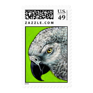 African Grey Parrot Stamps