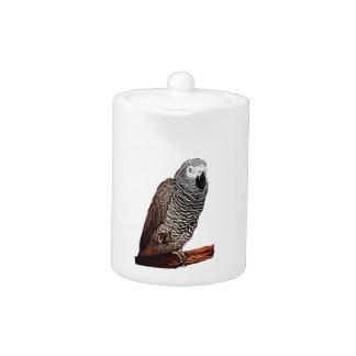 African Grey Parrot Teapot