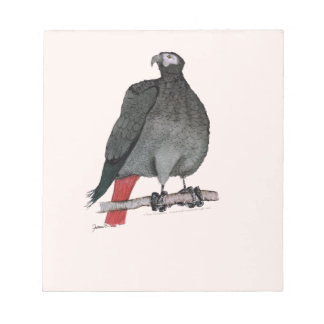 african grey parrot, tony fernandes notepad