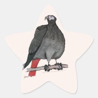 african grey parrot, tony fernandes star sticker