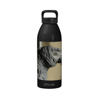 African Grey Parrot Water Bottles
