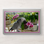 """African Grey Parrot with Orchids HP Laptop Skin<br><div class=""""desc"""">Congo African Grey Parrot posing among the purple Phalaenopsis Orchid flowers in the garden. A  pretty picture for the bird lover in you!</div>"""