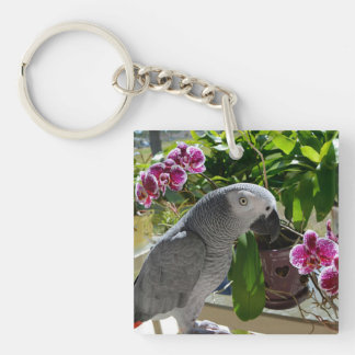 African Grey Parrot with Orchids Square Acrylic Key Chains