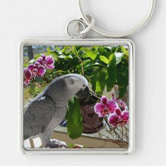 African Grey Parrot with Orchids Key Chains