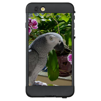 African Grey Parrot with Orchids LifeProof® NÜÜD® iPhone 6 Plus Case