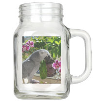African Grey Parrot with Orchids Mason Jar