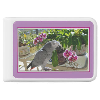 African Grey Parrot with Orchids Power Bank