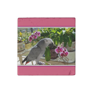 African Grey Parrot with Orchids Stone Magnet